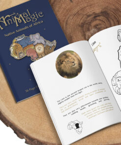 Colouring Book - African Animals