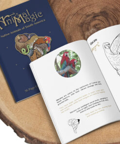 Colouring Book - South American Animals