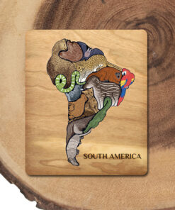 South American Animal Educational Puzzle