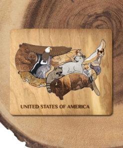 USA Animal Educational Puzzle