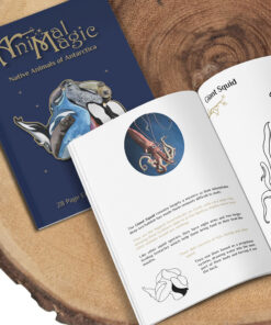 Colouring Book - Antarctica Animals